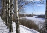 На берегу реки Вологды
