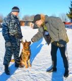 Встреча с четвероногими стражами порядка