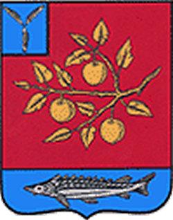 Колледжи Саратова 2019